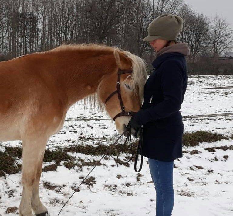 Balanced Horse Dora and Michelle