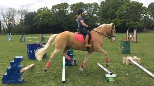 Rider on a handsome palomino pony