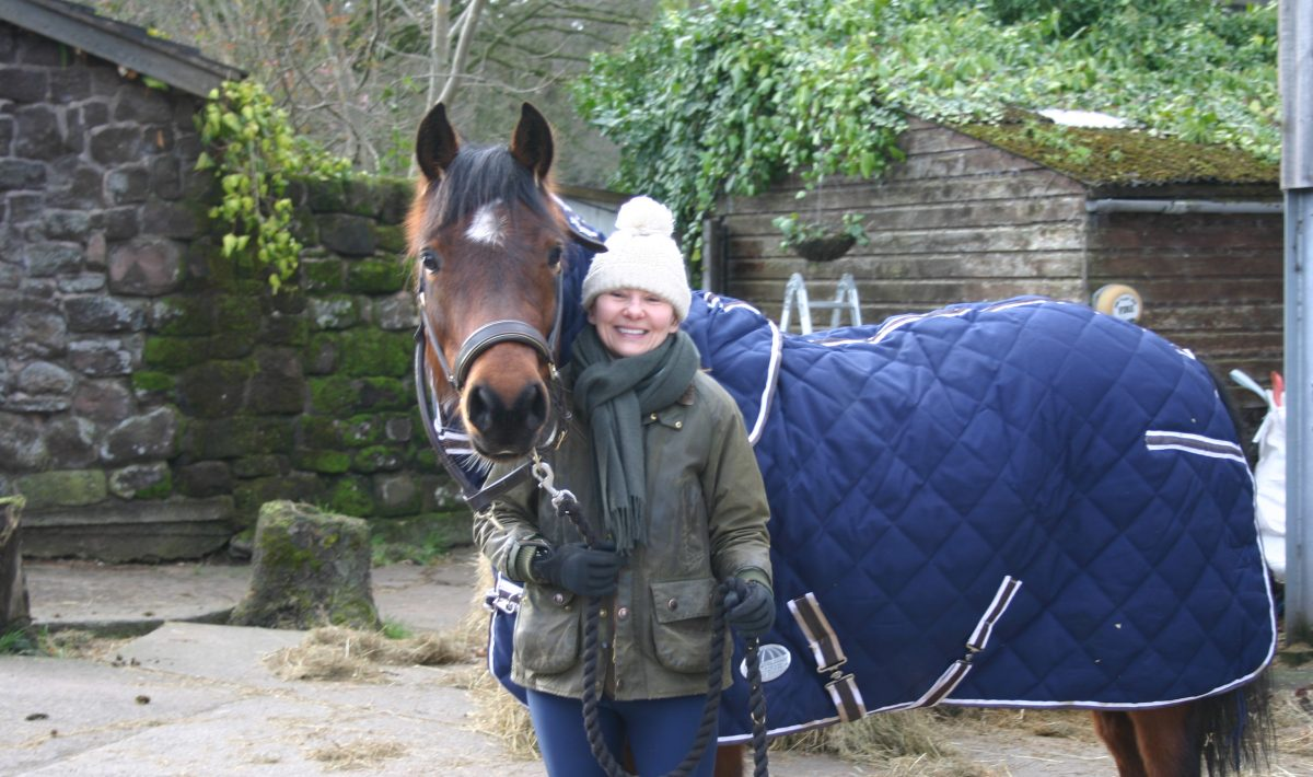 Riley the Pony New Stable Rug