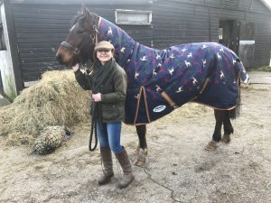 Riley Bay Horse in Weather beeta stag theme turnout rug