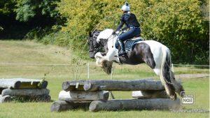 Cob jumping XC