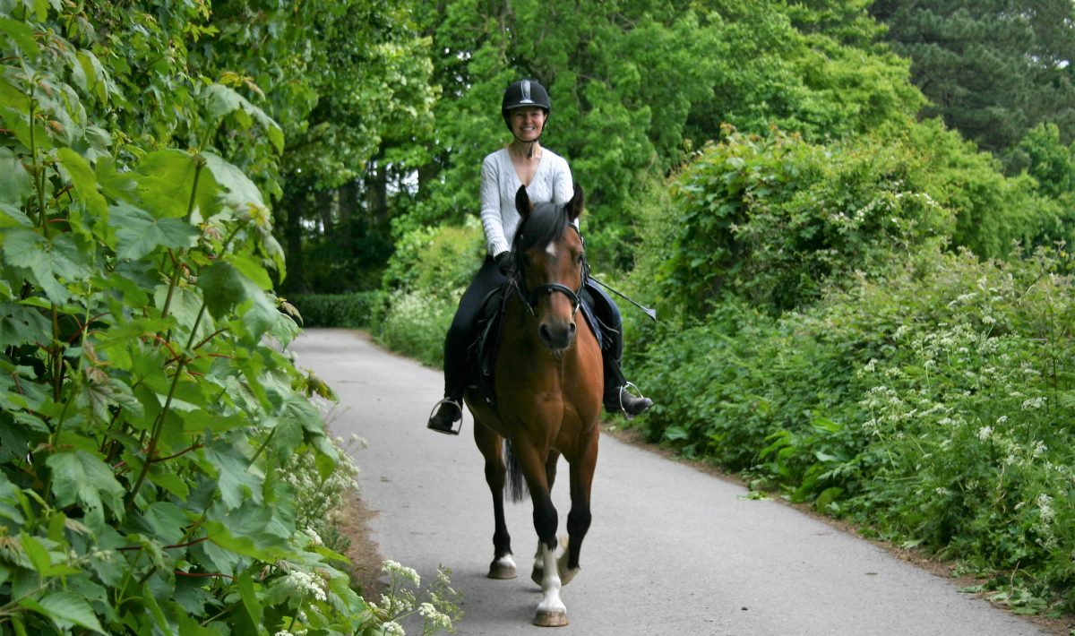 Horse and rider hacking out on a country lane