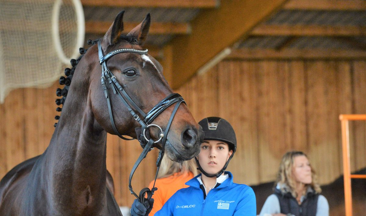 Theodora with Fido Dido at the CDIYR in Le Mans at the vet check. Fido was her mount for the YR European Championships in 2018