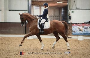 image of Sarah Roghers and her dressage horse Bumble