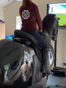 mechanical horse dressage test simulator